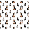 seamless pattern with adorable cat and dog on vector image vector image