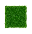 Green Grass Field Banner Football Place vector image vector image