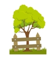 tree plant with fence vector image