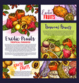 tropical exotic fruit posters groceries vector image vector image