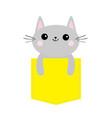 cat in yellow pocket cute cartoon character gray vector image vector image