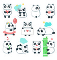 cute panda icon set isolated vector image vector image