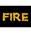 Fire textFlame typography Burning letters fiery vector image vector image