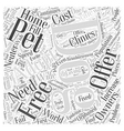 Free Dog Adoptions Word Cloud Concept vector image vector image