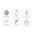 fruits and berries contours objects outline icons vector image vector image