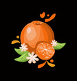 orange delicious fruit on black background vector image vector image