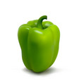 photo-realistic fresh pepper on a white vector image