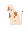 sleepy lonely cat portrait cute beige pet vector image vector image