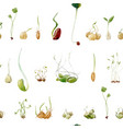 watercolor beans peas seeds sprouts pattern vector image vector image