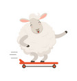 cute white sheep character riding a skateboard vector image vector image