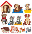 different types of pets on white background vector image