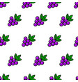 grape simple line style seamless pattern vector image