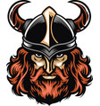 viking warrior head vector image vector image