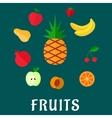 Fresh tropical and garden flat fruits set vector image