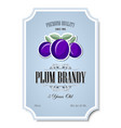 premium quality 5 years old plum brandy vector image vector image
