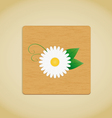 wooden plate chamomile vector image