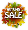 autumn sale card with colorful leaves vector image vector image