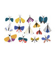 bundle of bright colored cartoon moths isolated on vector image