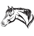 decorative portrait of horse 6 vector image vector image
