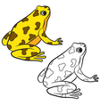 frog coloring page vector image vector image