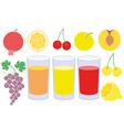 Juice vector image vector image
