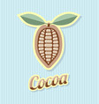 retro cocoa bean on striped background vector image