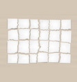 scraps of the white paper vector image vector image
