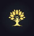 tree botany life nature gold logo vector image vector image