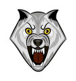 wolf growls vector image vector image