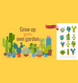 colorful cactuses home garden concept vector image vector image