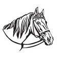 decorative portrait of horse 7 vector image vector image