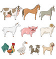 farm animals cow horse donkey goat pig sheep vector image
