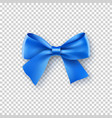 fashionable blue bow with ribbon vector image vector image