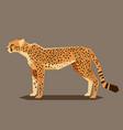 flat geometric cheetah vector image vector image