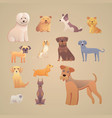 group of purebred dogs for dog vector image vector image