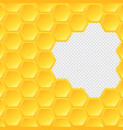 hexagon honeycomb on transparent background vector image vector image