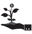 man hands holding money tree vector image vector image