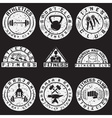 Set of various fitness grunge labels and design vector image vector image