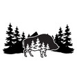 stylized monochrome with boar and vector image vector image