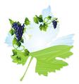 wine black leaf vector image