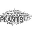aquarium plants one of the best ornaments in an vector image vector image