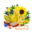 natural oil of orgin plants and nuts poster vector image