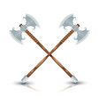 two ax viking on a white background color vector image vector image