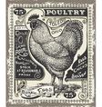 Vintage Poultry and Eggs Advertising Page vector image vector image