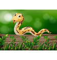 A snake above a wood vector image vector image