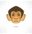 Angry monkey vector image vector image