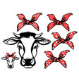 cow head with red bandanas black graphic vector image vector image
