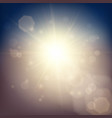 sunlight soft background vector image vector image