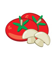 tomato and mushrooms vector image