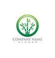 bamboo with green leaf for your logo icon template vector image